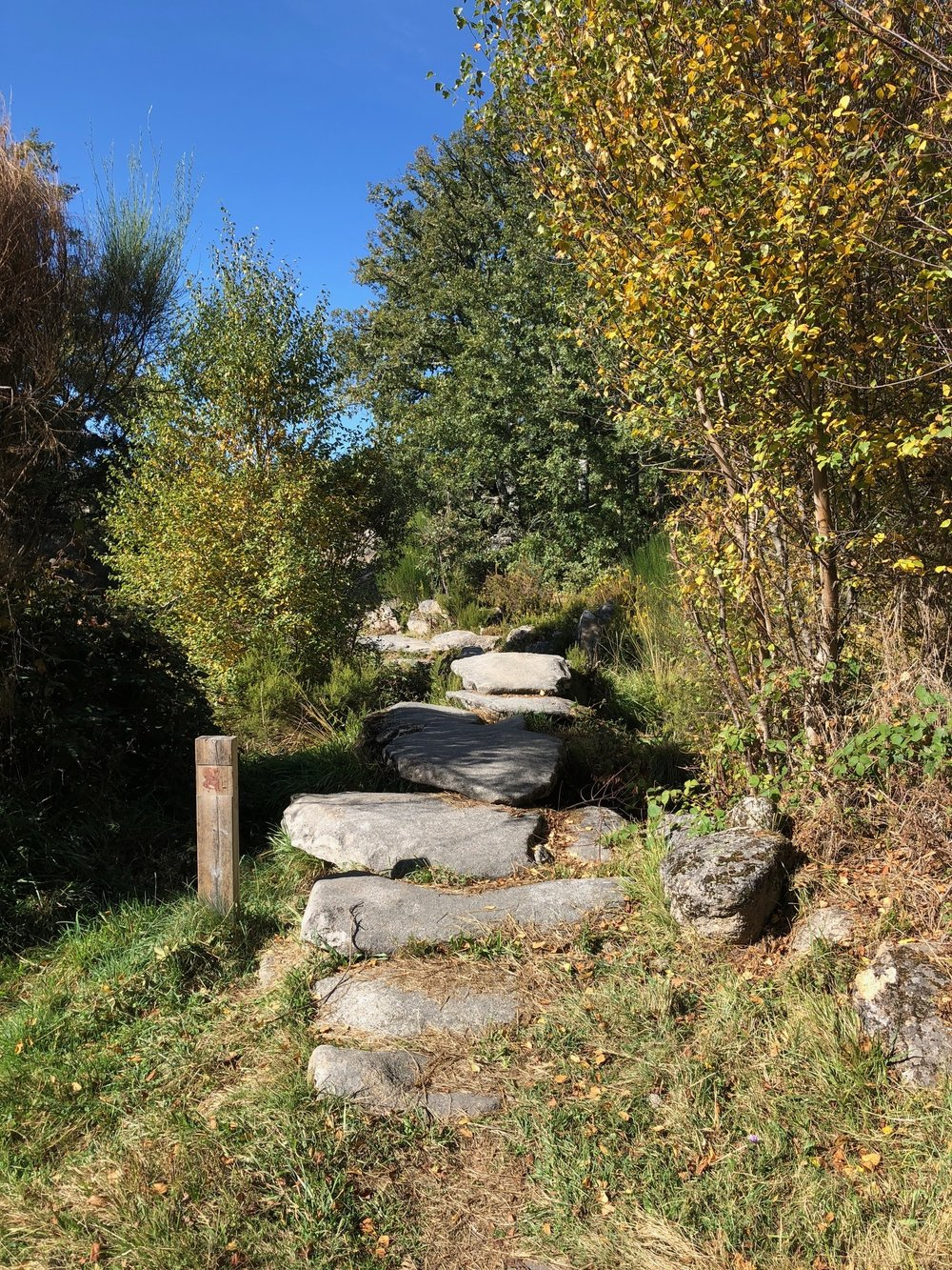 A bridge of stepping stones