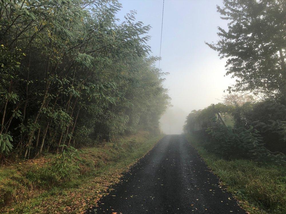 Subsidiary road