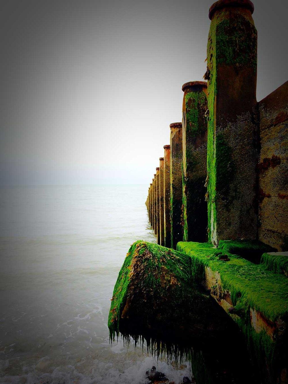 Green Groynes