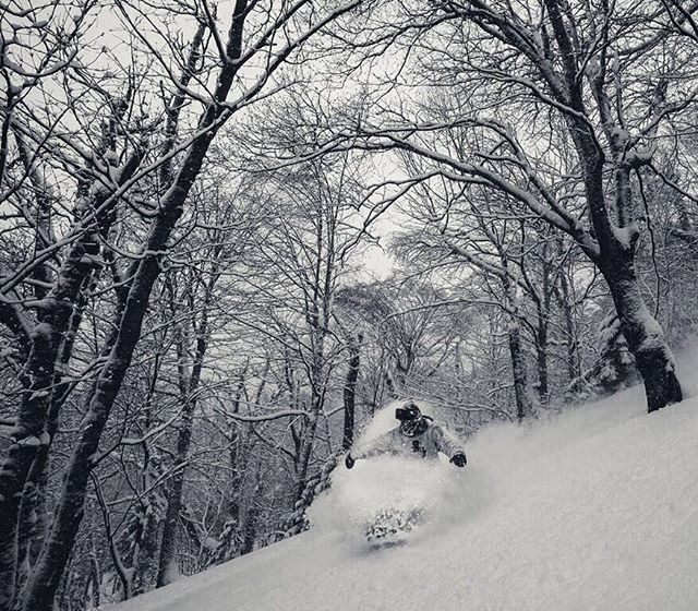 Lookin' like winter out here again! #ridegreen #livegreen #wesnowboard 📸: @chiefdirtbag