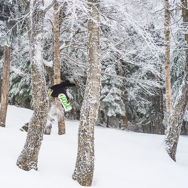 Sometimes you just have to fly sideways through the trees. 📸: @chiefdirtbag #ridegreen #livegreen #wesnowboard #smuggslove #iamasmuggler