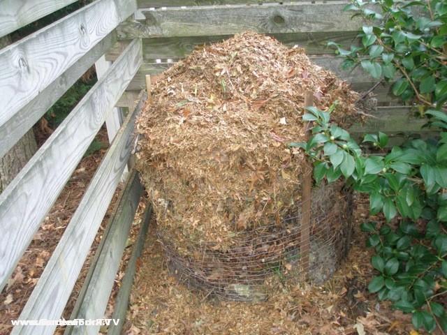 http://www.gardenfork.tv/free-leaf-compost-thank-you-neighbors-ricks-column/
