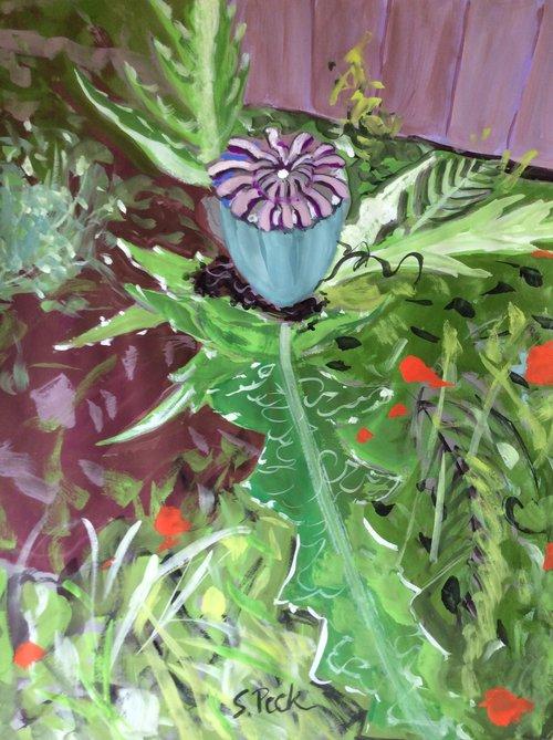 Poppy seed pod art by susanne peck poppy seed pod mightylinksfo