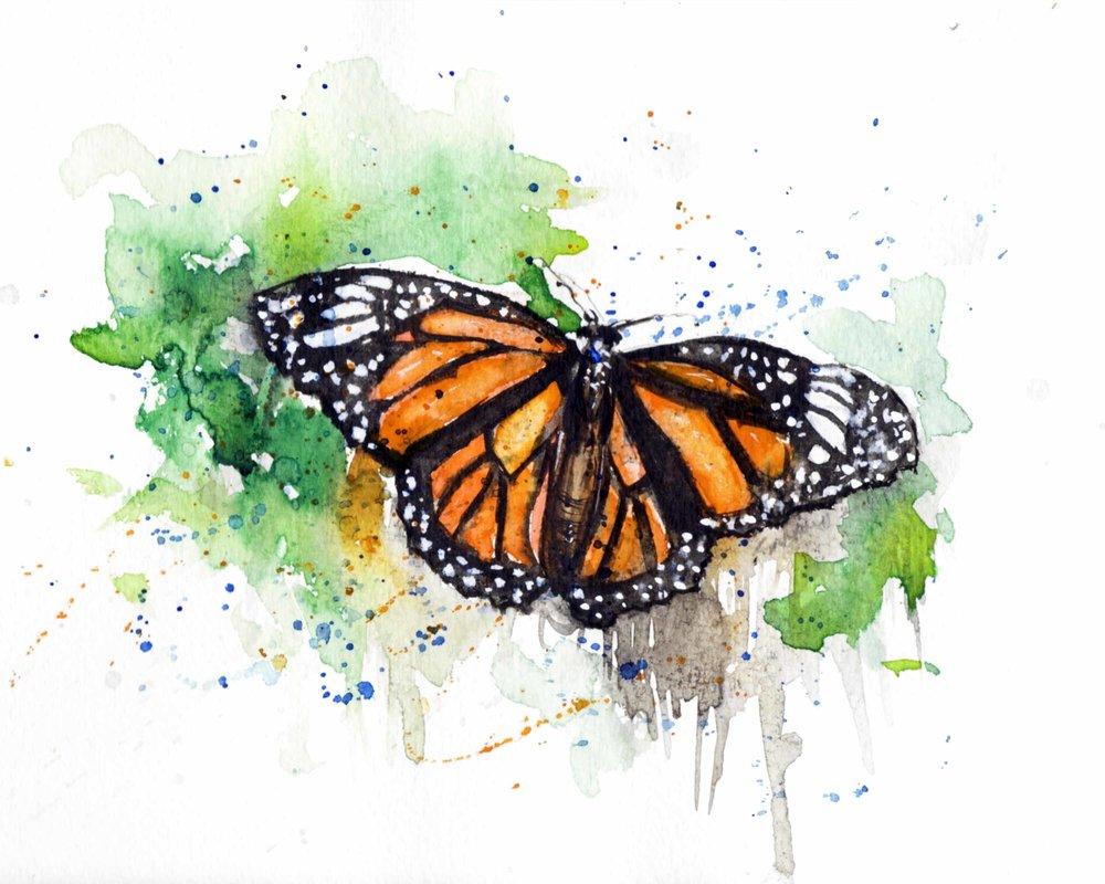 Monarch ETSY.jpg