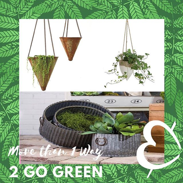 There's more than 1 way to go green in your home. Bring the outdoors in with our newest collection of planters.  #shopgentlyuponthisearth #houseandcloset #fairtrade #organicliving #reclaimed #sustainablefashion #ecofriendly #Shopsmallbusiness #ppb #pointpleasantbeach #arnoldave #jerseyshore #upcycled #shopgently #shoplocal