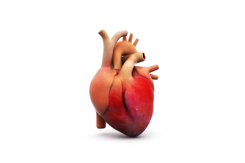 Normal Heart — Ismée Williams