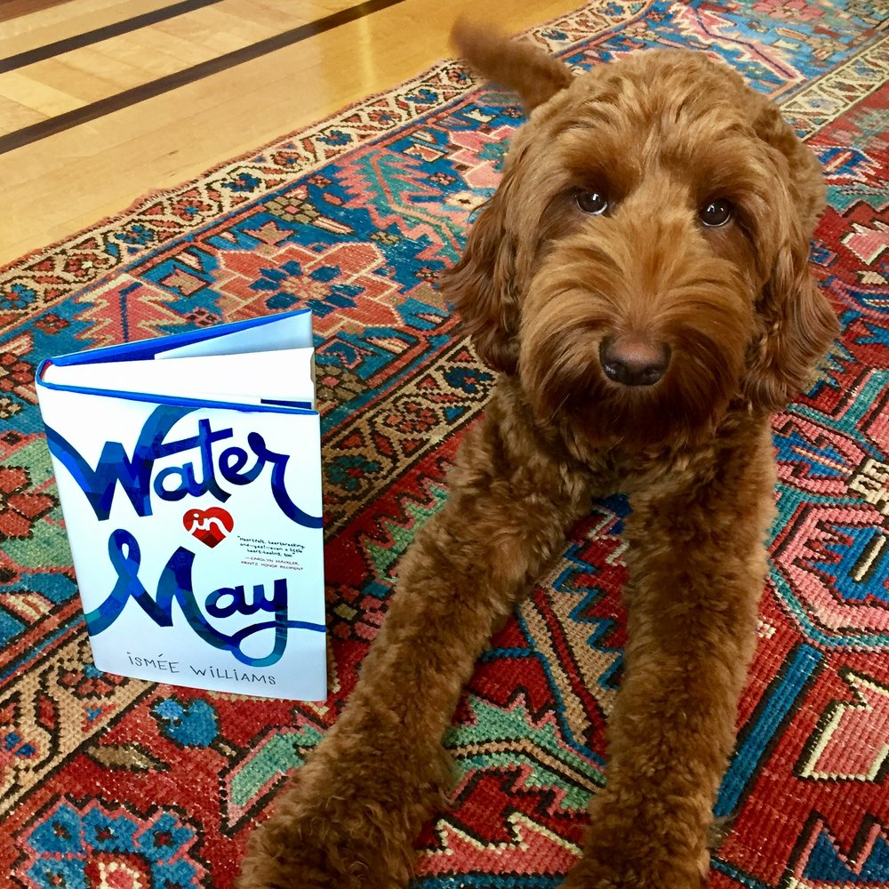 Rowan says... - WOOF! Buy the book! Because my humom wrote it. *wags tail*