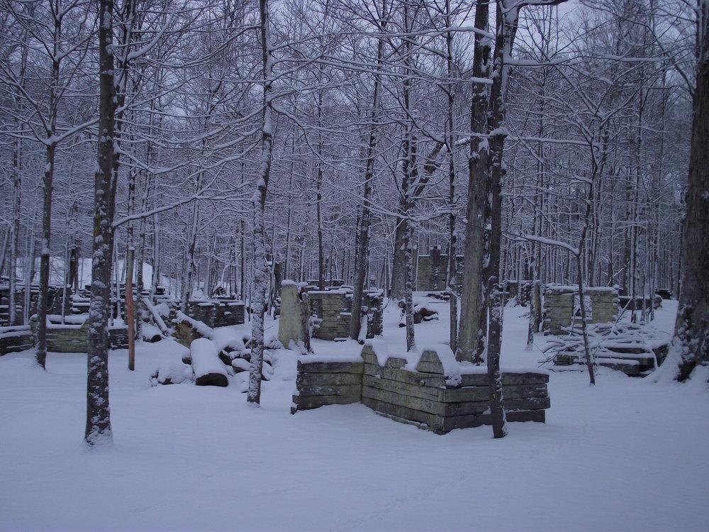 Feb 4 snowfall (3).JPG
