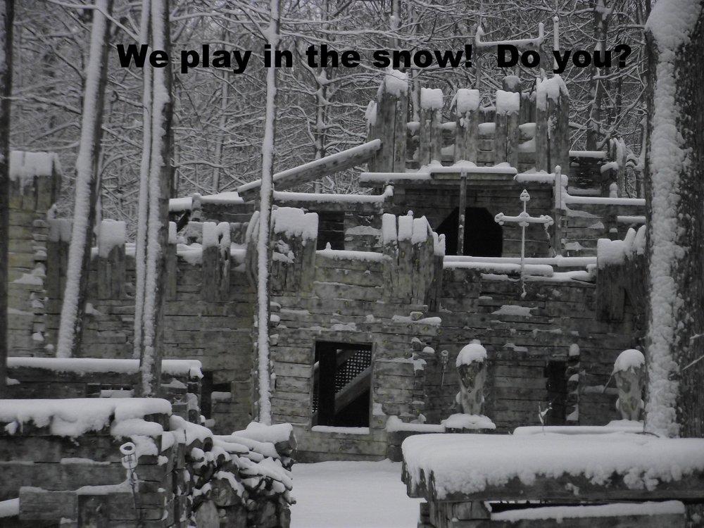 Feb 4 snowfall (5).JPG
