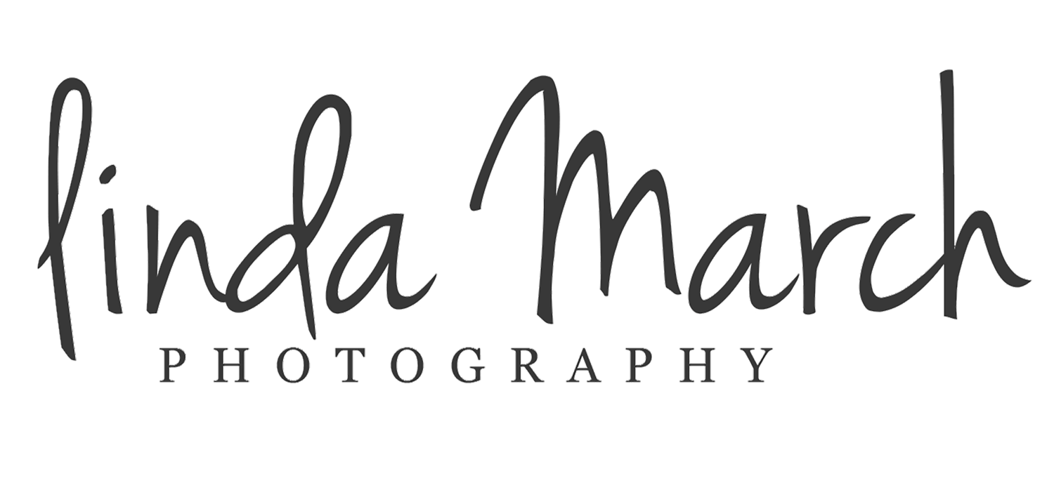 Linda March Photography Studio 61