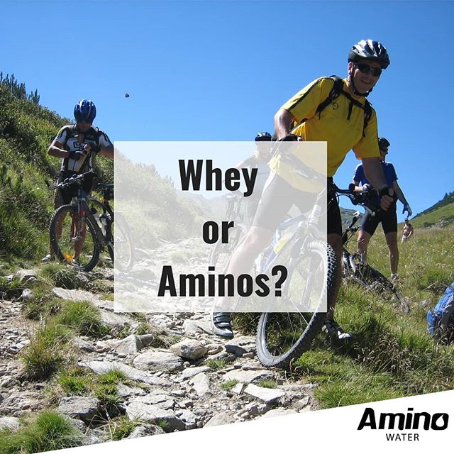 To find out whether whey protein or free form aminos are right for you, head on over to our articles page and claim your free sample LINK IN BIO #Drinkaminos #drinkaminowater💪🚴🧠🏋️️⚡️🔬