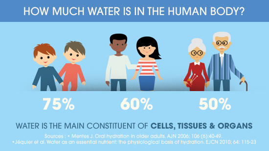 How much water is in the human body.png