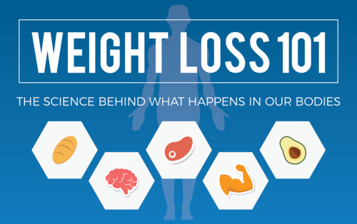 Infographic_WeightLoss101_FeatImage_1504x944px_v3b.png