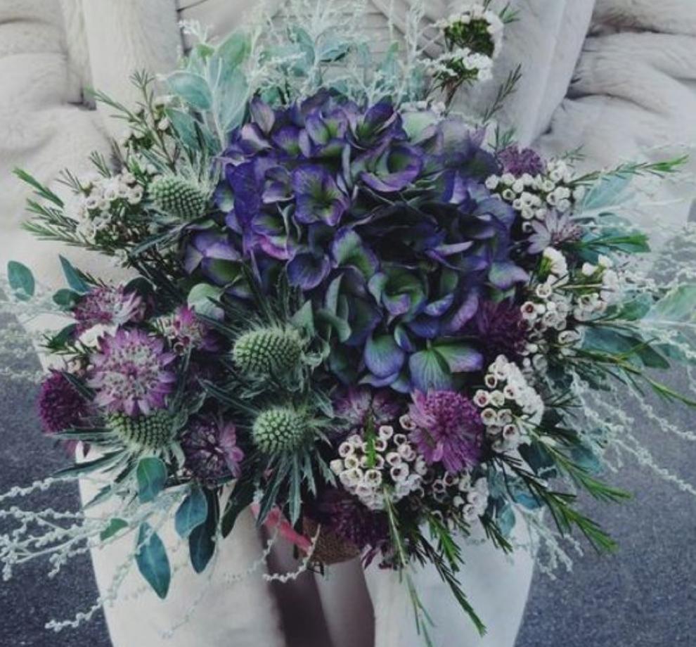Gorgeous lavender.