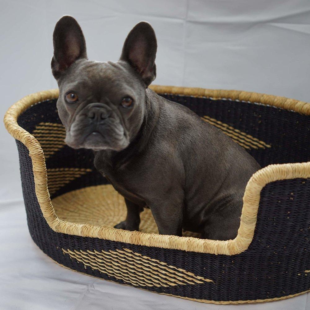 ESI DOG BASKET - MEDIUMSize: 65cm x 43cm x 26cm Approx - £130