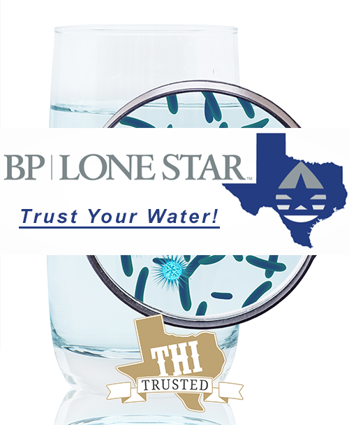 BP Lone Start Square copy.png