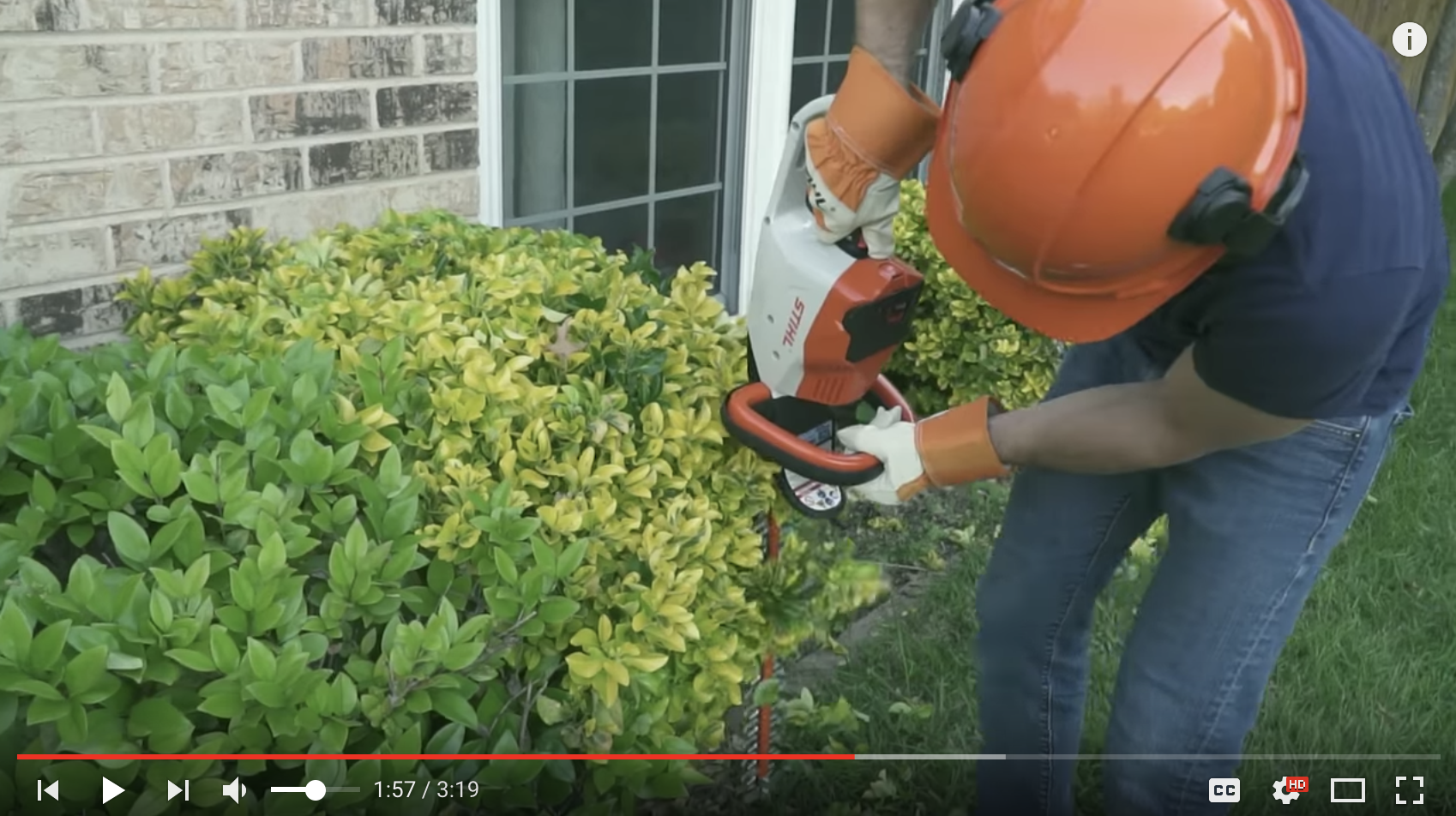 stihl hsa 56 battery powered hedge trimmer review texas home improvement. Black Bedroom Furniture Sets. Home Design Ideas