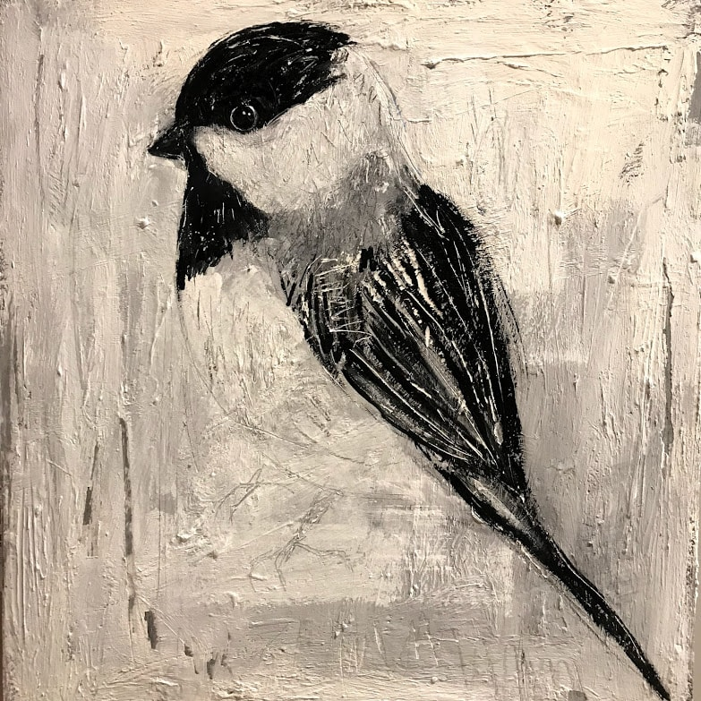 Study of a Black-Capped Chickadee
