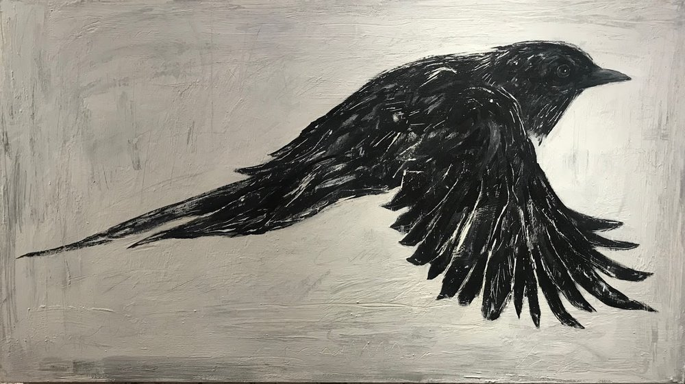 Study of a Crow