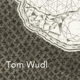 Tom_Wudl.jpg