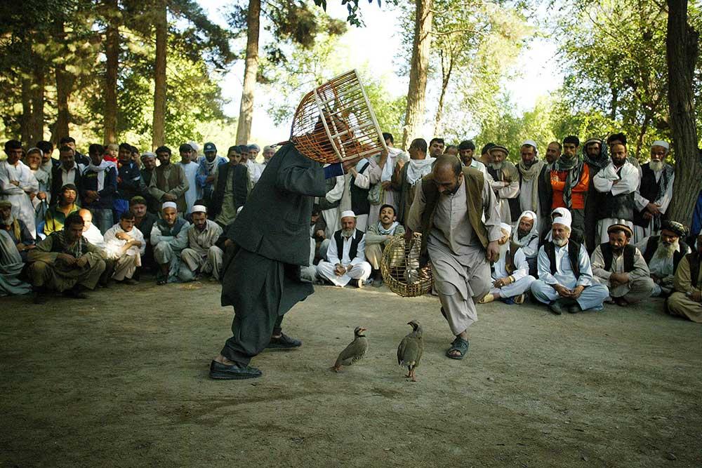 Moe_Zoyari_Afghanistan_19.JPG