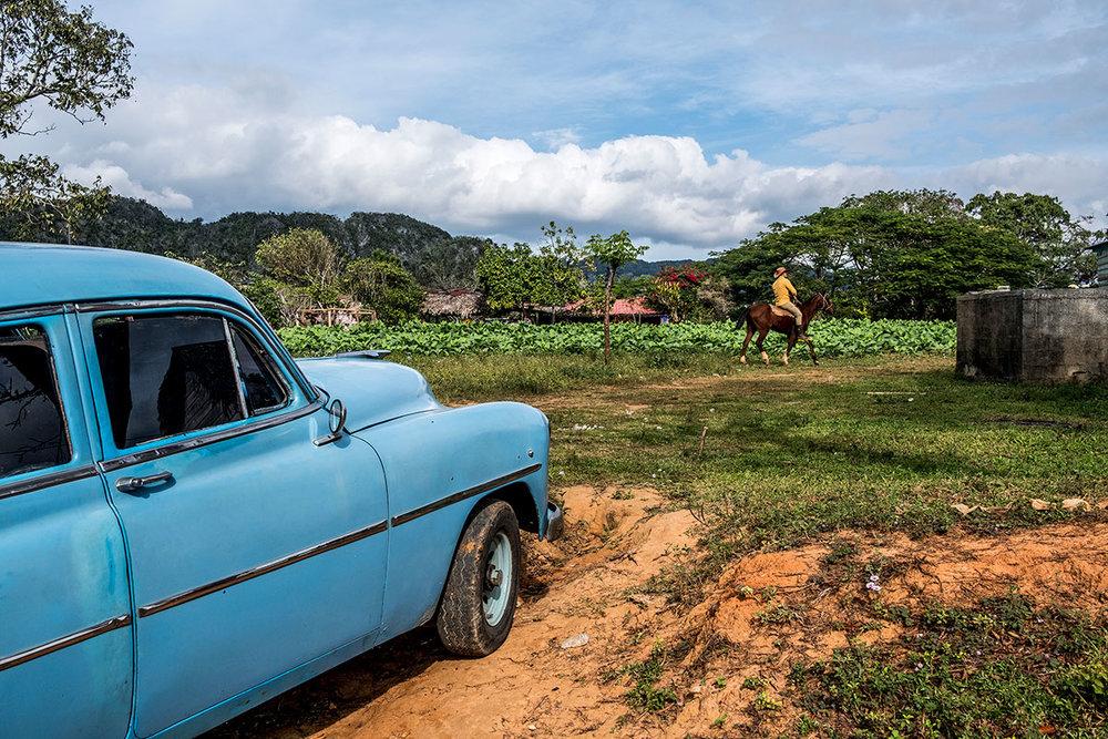 _DSF7513_Vinales_MoeZoyari_Cuba_B.JPG