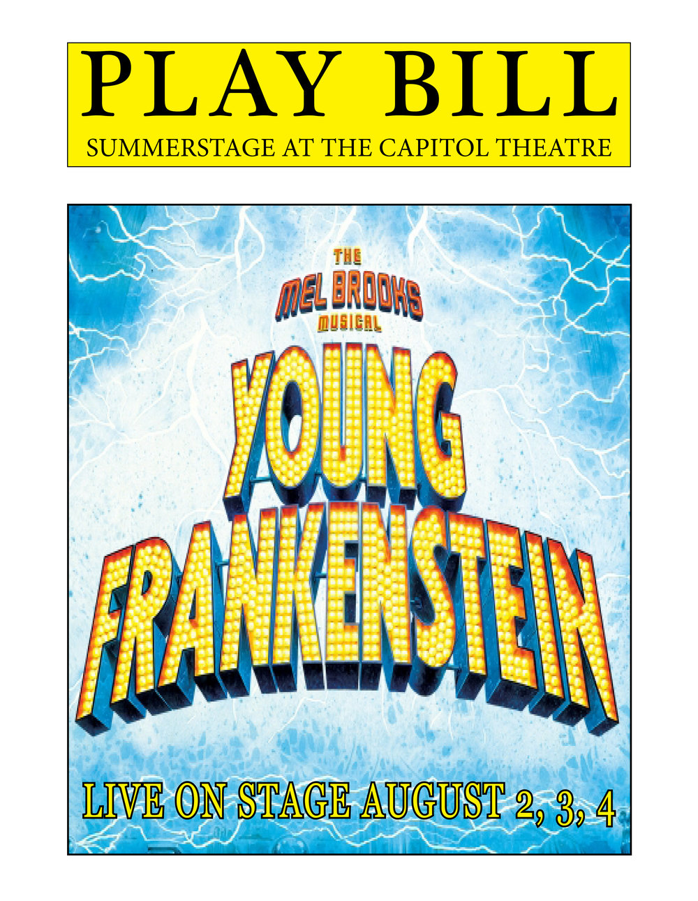 Young Frankenstein Playbill.jpg
