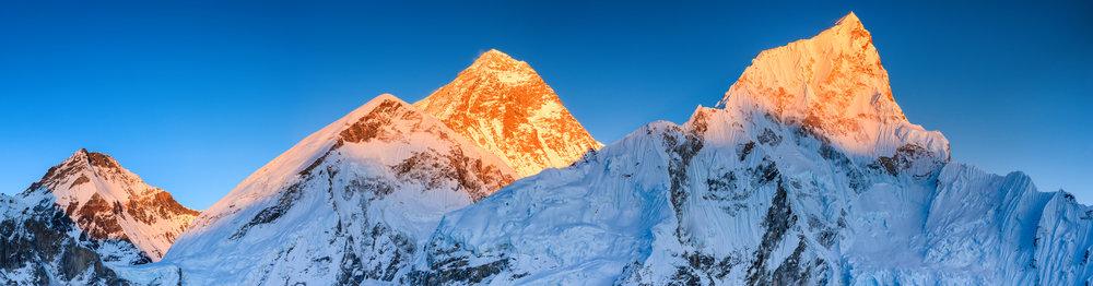 Everest - Newsletters.jpg
