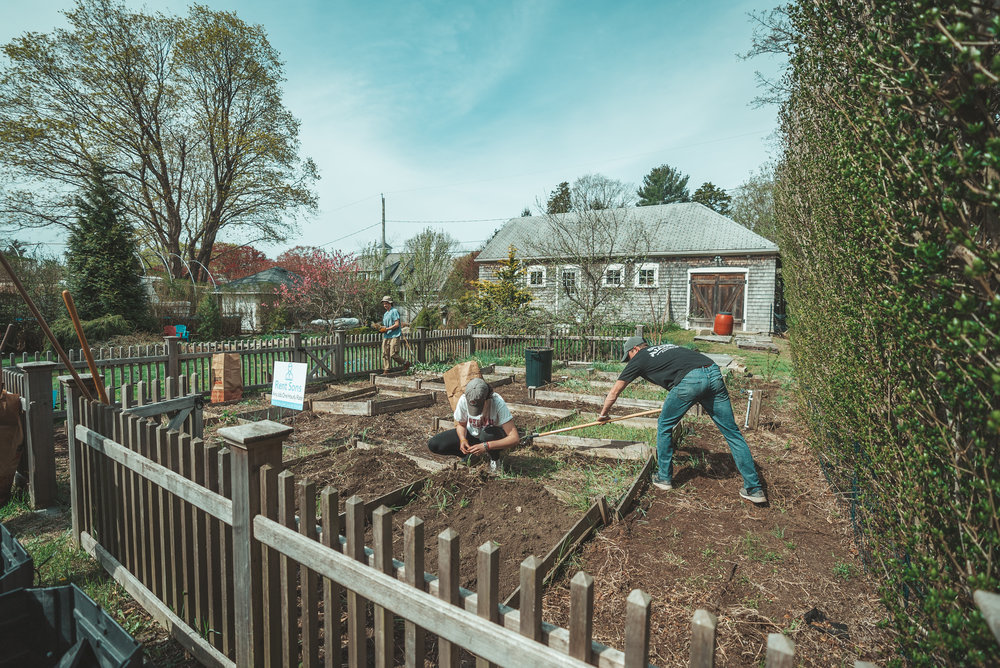 SPRING AND SUMMER LANDSCAPING