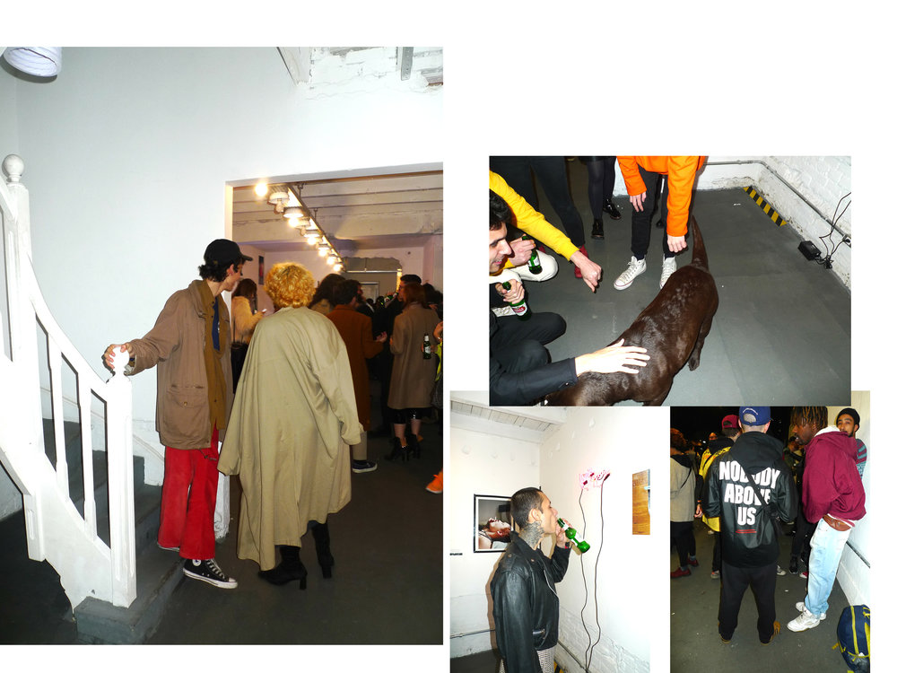 abertura-Fort-Gallery7.jpg