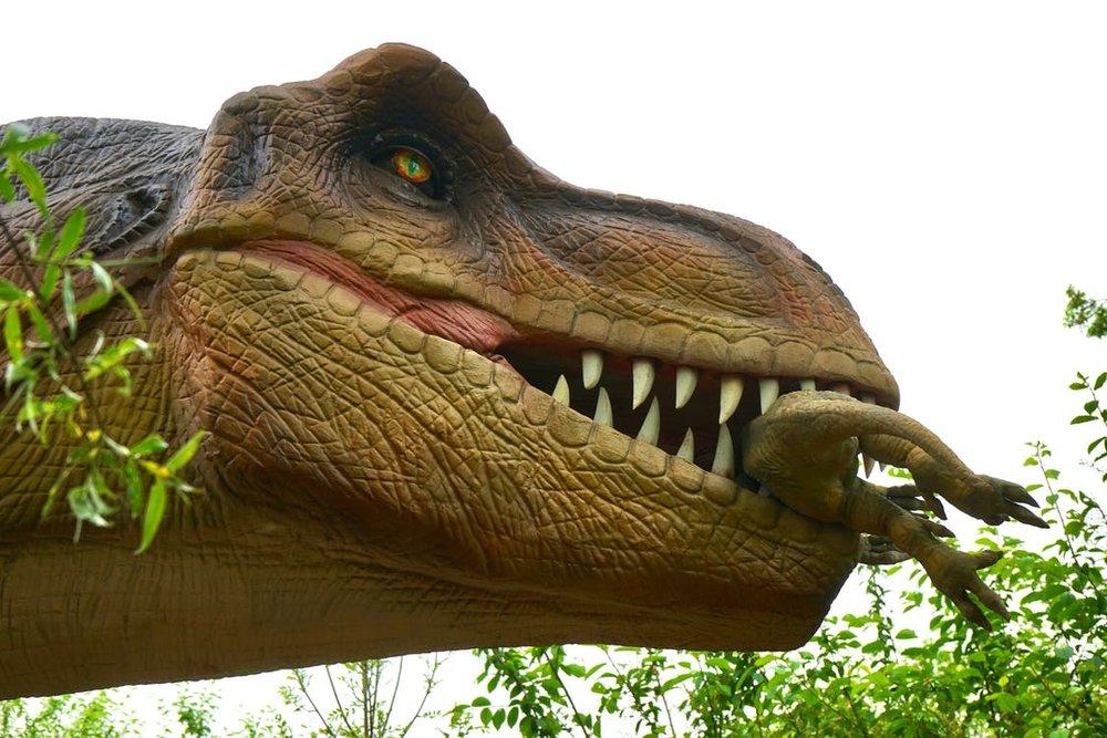 dinosaur.jpeg