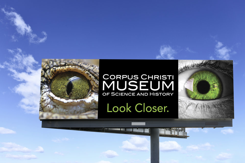 CC Museum Billboards Gator.jpg