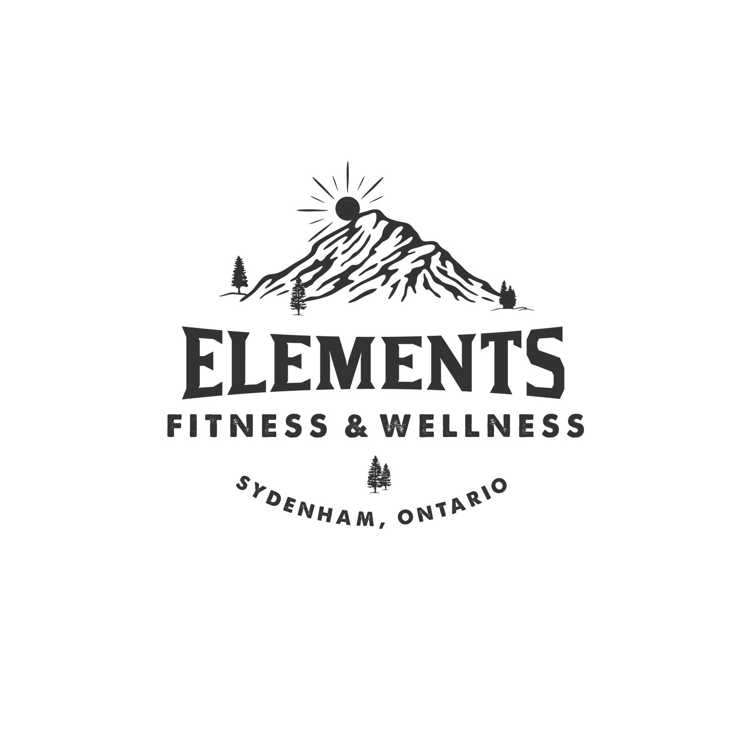 Elements Fitness and Wellness