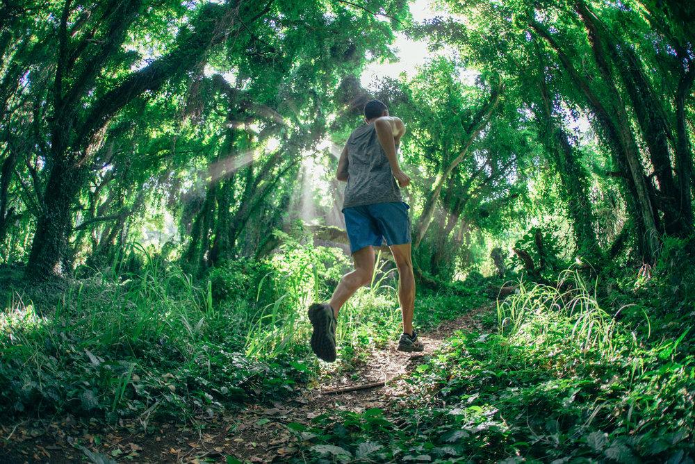 Honolua Jungle Shoe Kick.jpg
