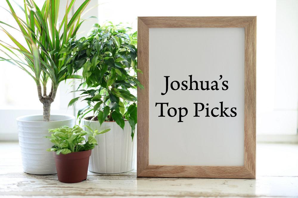 Joshua's Top PIck Image.jpg