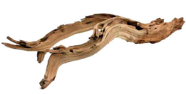 Decorative+Natural+California+Driftwood+Branch copy.png
