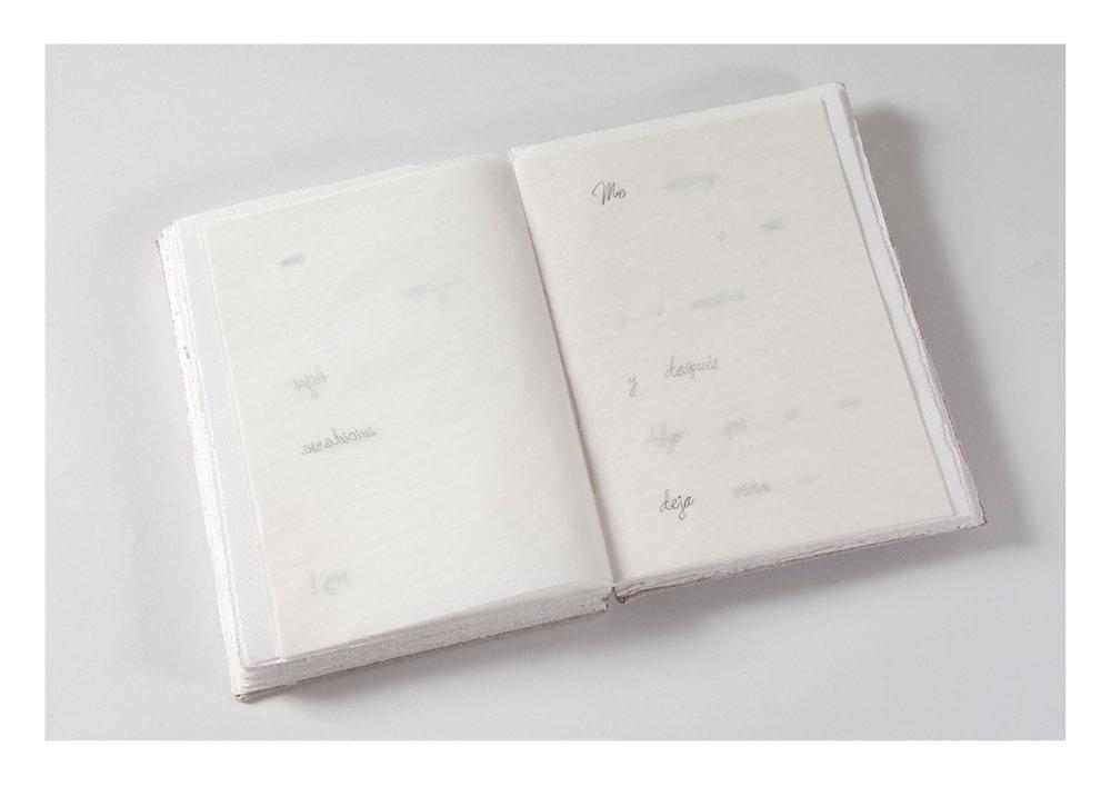 libros de artista _AID59.jpg