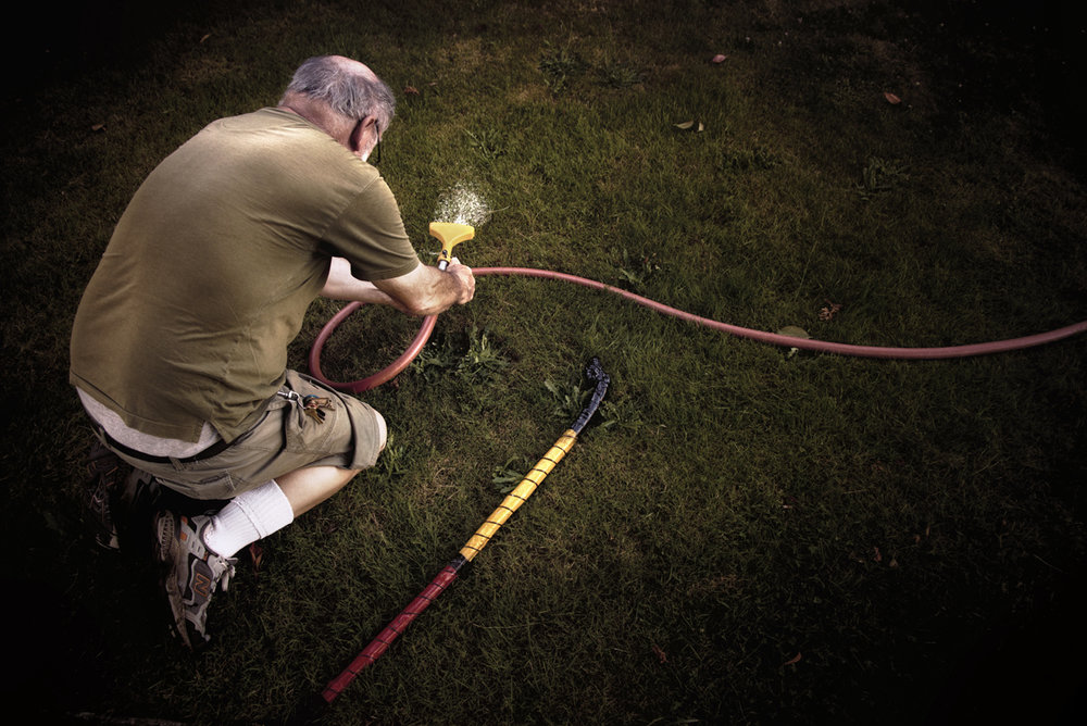 Watering the lawn_small.jpg