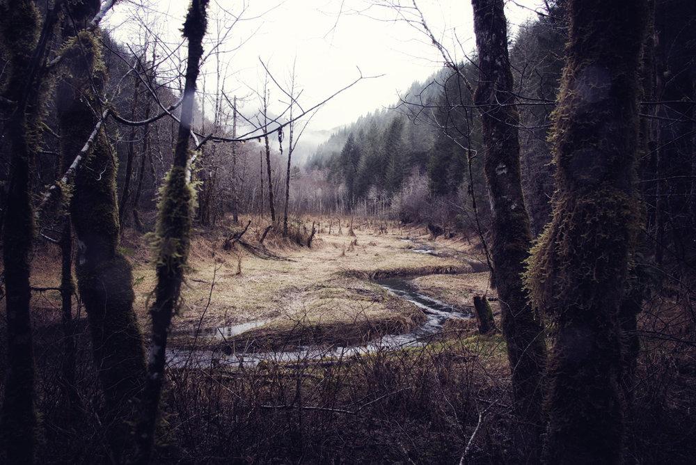 A River Runs Through It_resized_small.jpg