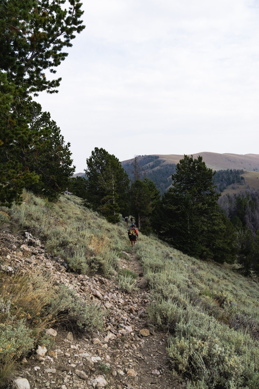 Rolling through the switchbacks down the Divide
