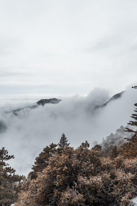 Storm Rolling In / Fullers Ridge