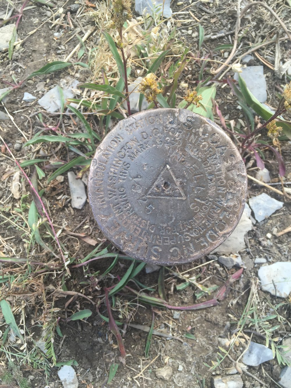 Mount Ellis Geo Pin.JPG