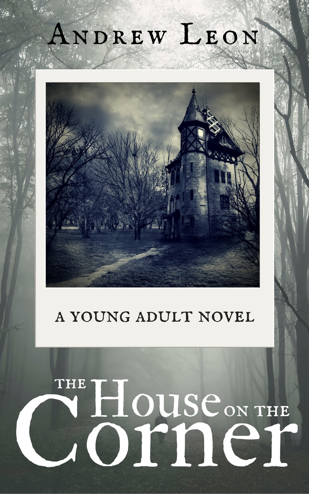 The House On The Corner Novel