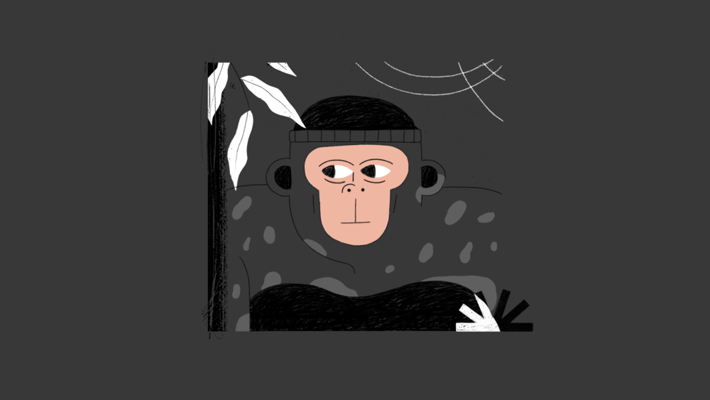 Stonyfield_monkey_01A.png