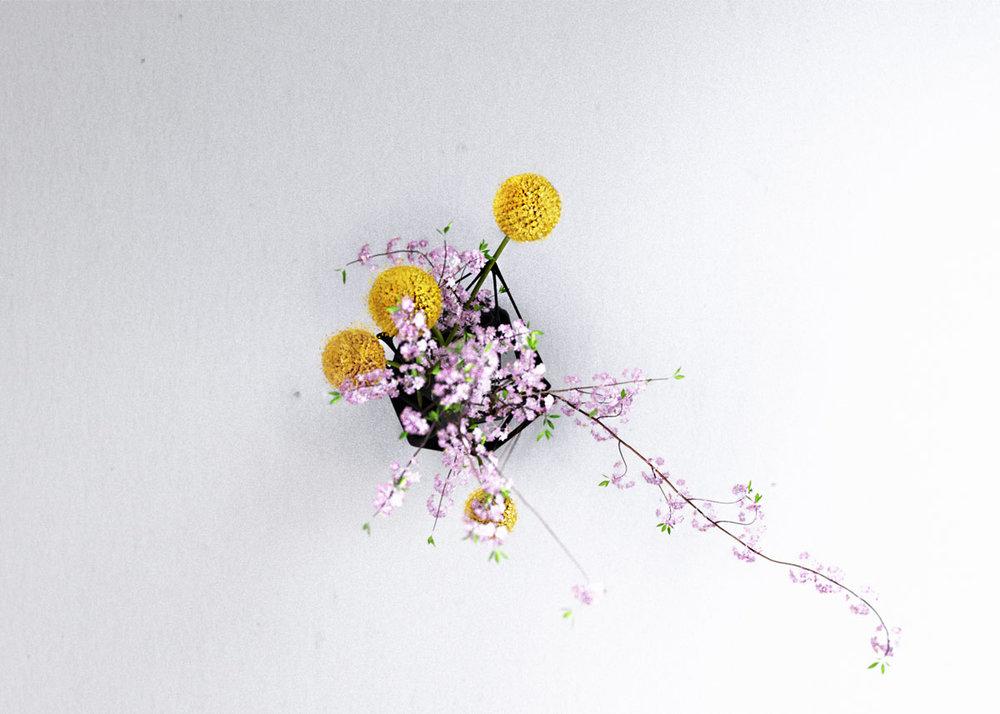 neura_flowers_top.jpg