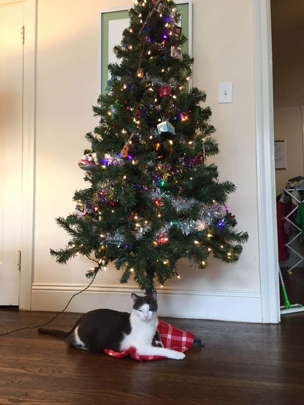 mo and the tree.jpg