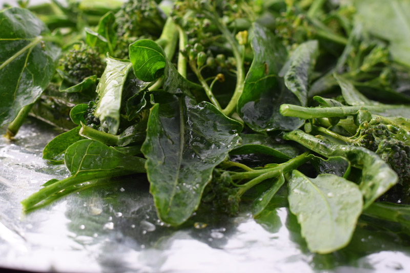 broccoli di ciccio.jpg