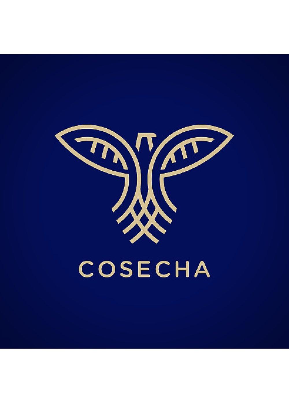 logo-goldandblue