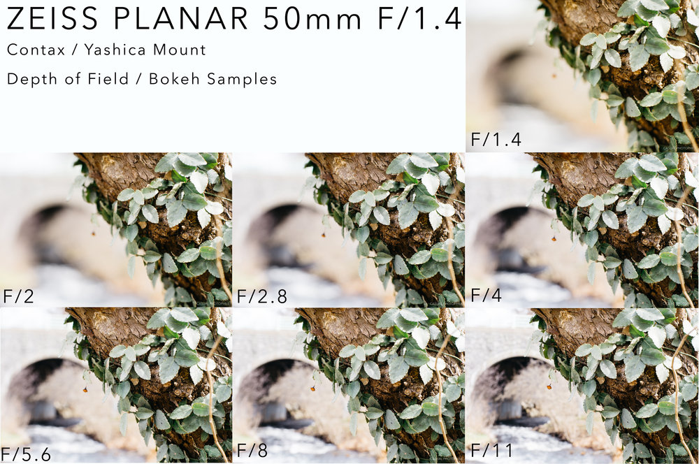 zeiss planar 50 14 bokeh sample.jpg