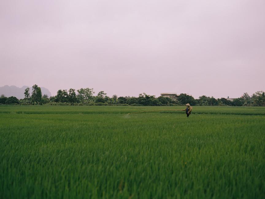 014_Brumley & Wells_fine_art_film_photography_vietnam.jpg